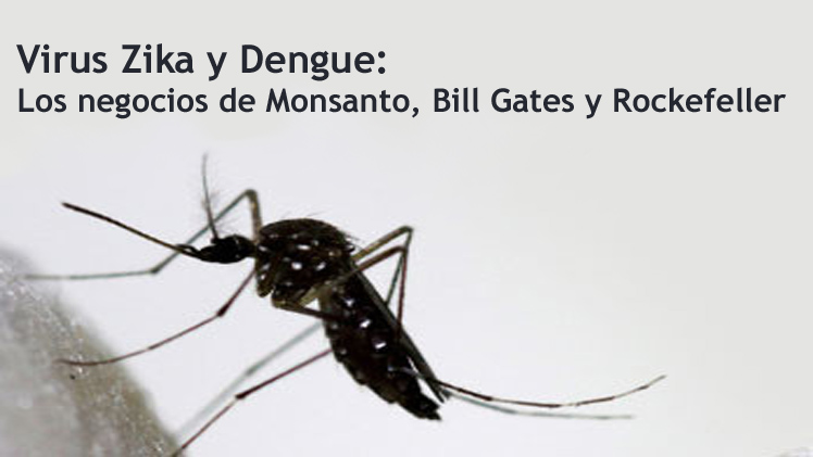 VirusZika-Dengue