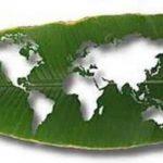 El Ecosocialismo en la Era del Antropoceno